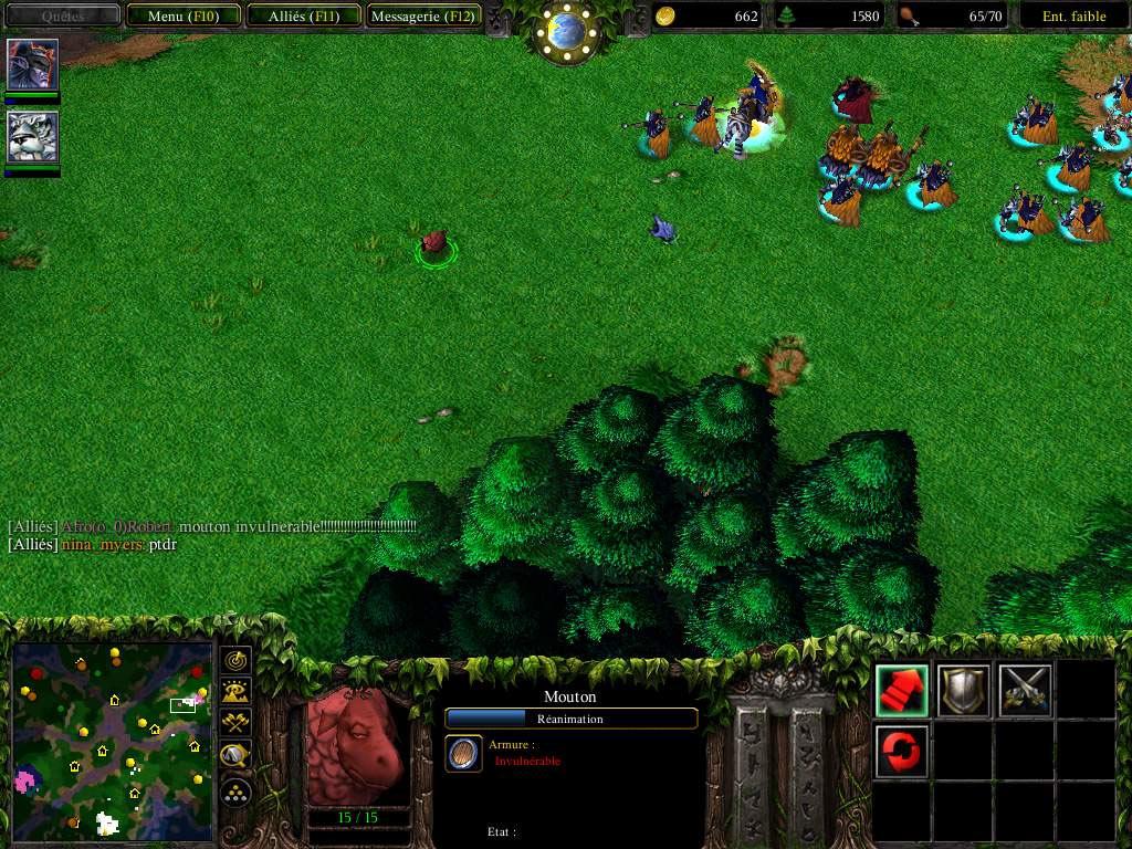 Et hop, un mouton invulnérable ;)  Screenshot envoyé par Faust.