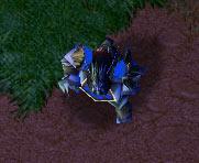 Screenshot du Druid of the Claw vu de haut