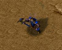 Screenshot du Druid of the Talon vu de haut