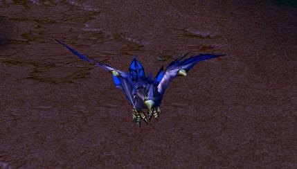 Screenshot du Druid of the Talon sous la forme d'un oiseau vu de face
