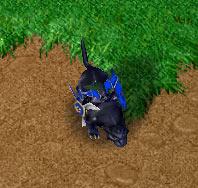 Screenshot de la Chasseresse vue de haut