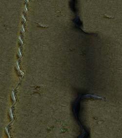 http://warcraft3.judgehype.com/screenshots/strategies/editeur/fred01/07.jpg